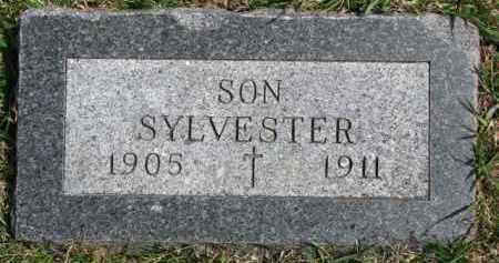 COTTER, SYLVESTER - Dixon County, Nebraska | SYLVESTER COTTER - Nebraska Gravestone Photos