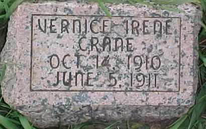 CRANE, VERNICE IRENE - Dixon County, Nebraska | VERNICE IRENE CRANE - Nebraska Gravestone Photos