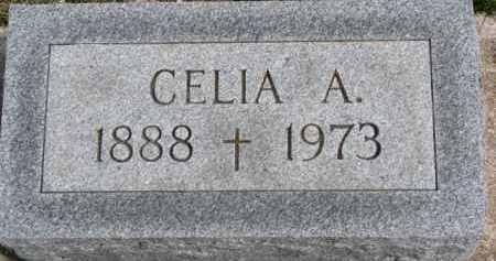 CURRAN, CELIA A. - Dixon County, Nebraska | CELIA A. CURRAN - Nebraska Gravestone Photos