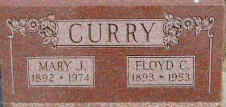 CURRY, MARY J. - Dixon County, Nebraska | MARY J. CURRY - Nebraska Gravestone Photos