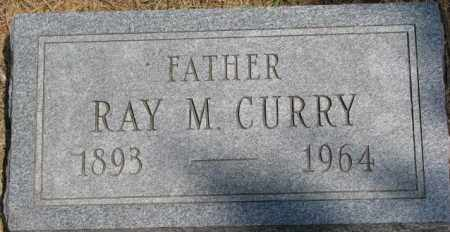 CURRY, RAY M. - Dixon County, Nebraska | RAY M. CURRY - Nebraska Gravestone Photos