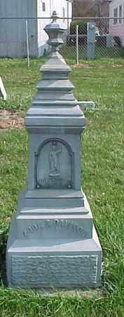 DAVISON, ROSA B. - Dixon County, Nebraska | ROSA B. DAVISON - Nebraska Gravestone Photos