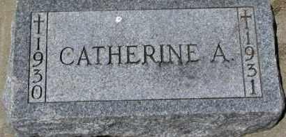 DAY, CATHERINE A. - Dixon County, Nebraska | CATHERINE A. DAY - Nebraska Gravestone Photos