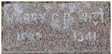 DE WITT, HARRY C. - Dixon County, Nebraska | HARRY C. DE WITT - Nebraska Gravestone Photos