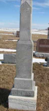 DELAY, CAROLINE - Dixon County, Nebraska | CAROLINE DELAY - Nebraska Gravestone Photos