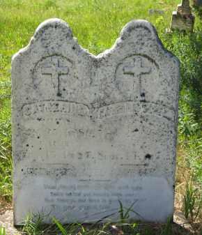 DONAHOE, CATHERINE - Dixon County, Nebraska   CATHERINE DONAHOE - Nebraska Gravestone Photos