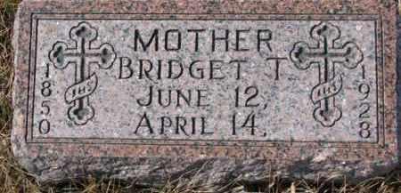 DOUGHERTY, BRIDGET T. - Dixon County, Nebraska   BRIDGET T. DOUGHERTY - Nebraska Gravestone Photos