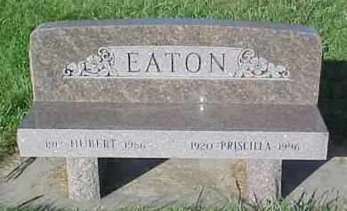 EATON, HUBERT - Dixon County, Nebraska | HUBERT EATON - Nebraska Gravestone Photos