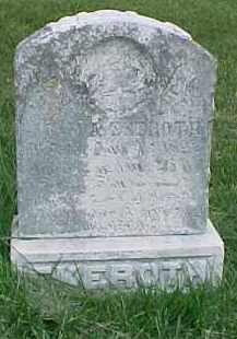 EKEROTH, VIOLA - Dixon County, Nebraska | VIOLA EKEROTH - Nebraska Gravestone Photos