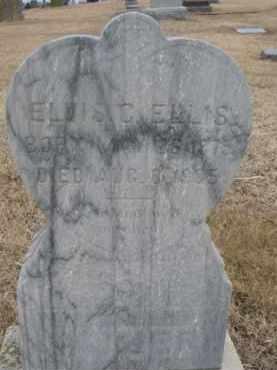 ELLIS, ELVIS C. - Dixon County, Nebraska | ELVIS C. ELLIS - Nebraska Gravestone Photos