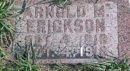 ERICKSON, ARNOLD M. - Dixon County, Nebraska | ARNOLD M. ERICKSON - Nebraska Gravestone Photos