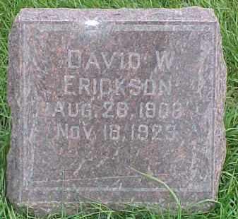 ERICKSON, DAVID W. - Dixon County, Nebraska   DAVID W. ERICKSON - Nebraska Gravestone Photos