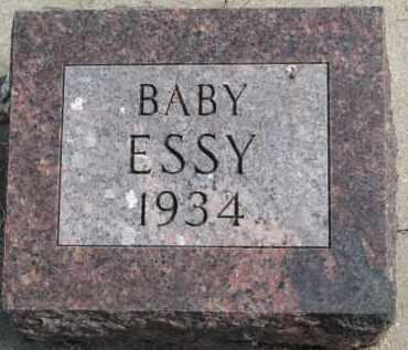 ESSY, INFANT - Dixon County, Nebraska | INFANT ESSY - Nebraska Gravestone Photos