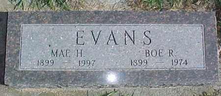 EVANS, MAE H. - Dixon County, Nebraska   MAE H. EVANS - Nebraska Gravestone Photos
