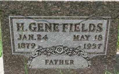 FIELDS, H. GENE - Dixon County, Nebraska | H. GENE FIELDS - Nebraska Gravestone Photos
