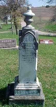 FIELDS, NETTIE A. - Dixon County, Nebraska | NETTIE A. FIELDS - Nebraska Gravestone Photos