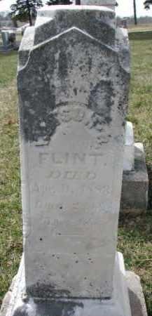 FLINT, WATSON B. - Dixon County, Nebraska | WATSON B. FLINT - Nebraska Gravestone Photos