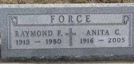 FORCE, RAYMOND F. - Dixon County, Nebraska | RAYMOND F. FORCE - Nebraska Gravestone Photos