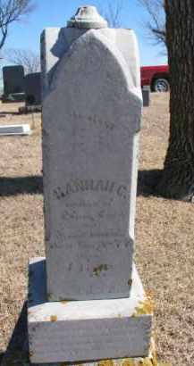 FORD, HANNAH C. - Dixon County, Nebraska | HANNAH C. FORD - Nebraska Gravestone Photos
