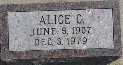 FORSBERG, ALICE C. - Dixon County, Nebraska | ALICE C. FORSBERG - Nebraska Gravestone Photos