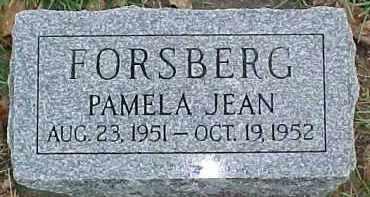 FORSBERG, PAMELA JEAN - Dixon County, Nebraska | PAMELA JEAN FORSBERG - Nebraska Gravestone Photos