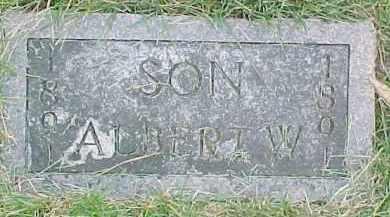 FRANSEN, ALBERT W. - Dixon County, Nebraska | ALBERT W. FRANSEN - Nebraska Gravestone Photos