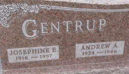 GENTRUP, JOSEPHINE E. - Dixon County, Nebraska   JOSEPHINE E. GENTRUP - Nebraska Gravestone Photos