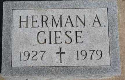 GIESE, HERMAN A. - Dixon County, Nebraska | HERMAN A. GIESE - Nebraska Gravestone Photos