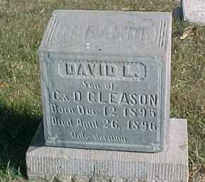 GLEASON, DAVID L. - Dixon County, Nebraska | DAVID L. GLEASON - Nebraska Gravestone Photos
