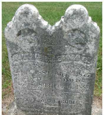 GOULD, EMMA CATHERINE - Dixon County, Nebraska | EMMA CATHERINE GOULD - Nebraska Gravestone Photos