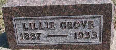 GROVE, LILLIE - Dixon County, Nebraska | LILLIE GROVE - Nebraska Gravestone Photos