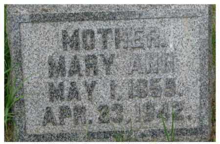 HAMILTON, MARY ANN - Dixon County, Nebraska | MARY ANN HAMILTON - Nebraska Gravestone Photos