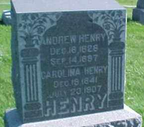 HENRY, ANDREW - Dixon County, Nebraska   ANDREW HENRY - Nebraska Gravestone Photos