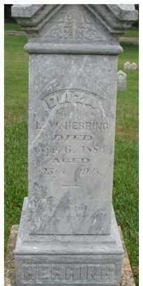 HERRING, ELIZA - Dixon County, Nebraska | ELIZA HERRING - Nebraska Gravestone Photos