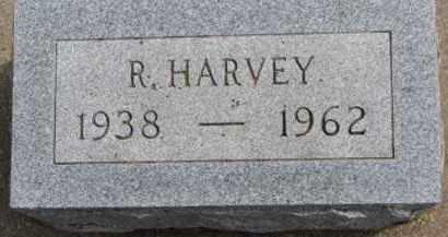 HINKON, R. HARVEY - Dixon County, Nebraska | R. HARVEY HINKON - Nebraska Gravestone Photos