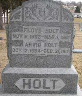 HOLT, ARVID - Dixon County, Nebraska | ARVID HOLT - Nebraska Gravestone Photos