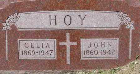 HOY, JOHN - Dixon County, Nebraska | JOHN HOY - Nebraska Gravestone Photos