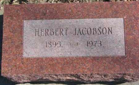 JACOBSON, HERBERT - Dixon County, Nebraska | HERBERT JACOBSON - Nebraska Gravestone Photos