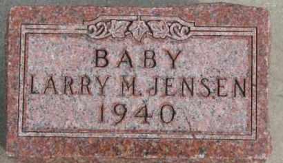 JENSEN, LARRY M. - Dixon County, Nebraska | LARRY M. JENSEN - Nebraska Gravestone Photos