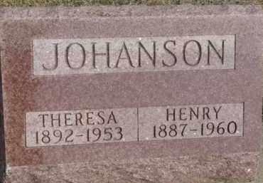 JOHANSON, THERESA - Dixon County, Nebraska | THERESA JOHANSON - Nebraska Gravestone Photos