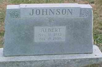 JOHNSON, ALBERT - Dixon County, Nebraska | ALBERT JOHNSON - Nebraska Gravestone Photos