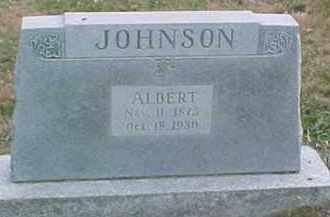 JOHNSON, ALBERT - Dixon County, Nebraska   ALBERT JOHNSON - Nebraska Gravestone Photos