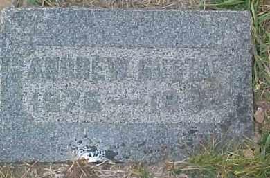 JOHNSON, ANDREW GUSTAF - Dixon County, Nebraska   ANDREW GUSTAF JOHNSON - Nebraska Gravestone Photos