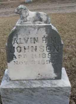 JOHNSON, ALVIN H.M. - Dixon County, Nebraska   ALVIN H.M. JOHNSON - Nebraska Gravestone Photos