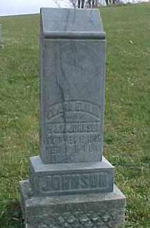 JOHNSON, CLARA EMILIA - Dixon County, Nebraska | CLARA EMILIA JOHNSON - Nebraska Gravestone Photos