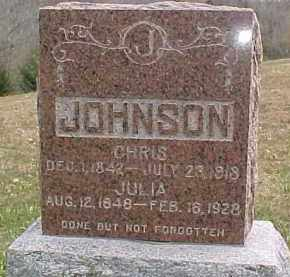 JOHNSON, JULIA - Dixon County, Nebraska | JULIA JOHNSON - Nebraska Gravestone Photos
