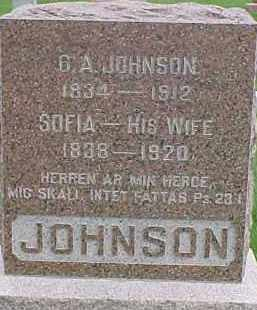 JOHNSON, C.A. - Dixon County, Nebraska | C.A. JOHNSON - Nebraska Gravestone Photos