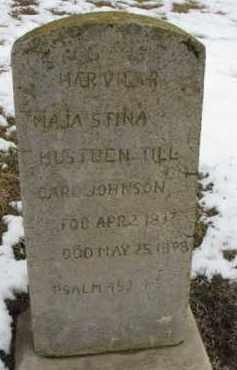 JOHNSON, CARL - Dixon County, Nebraska | CARL JOHNSON - Nebraska Gravestone Photos