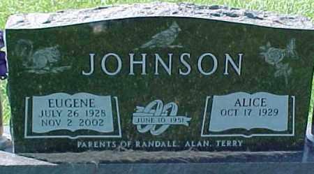 JOHNSON, ALICE - Dixon County, Nebraska | ALICE JOHNSON - Nebraska Gravestone Photos