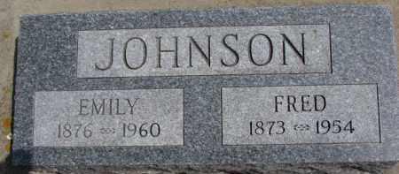 JOHNSON, EMILY - Dixon County, Nebraska | EMILY JOHNSON - Nebraska Gravestone Photos